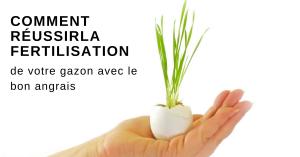 comment résuusir la fertilisation de votre gazon avec le bon angrais